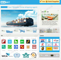 Competitive international china logistics service
