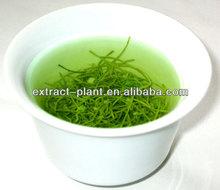 Green Tea Extract UV, HPLC, GC 100% Natural Pure Green Tea Extract