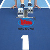 IAAF Professional Synthetic EPDM rubber flooring 13mm running track