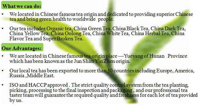 As A Natural Supplement For Weight Loss Chinese Green Tea Et Al Acute Liver Failure Induced By The Many Benefits Of