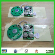 Recordable Sound Chip for Greeting Cards
