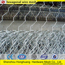 Pvc Coated Hexagonal Wire Mesh 6*8 /2--4mm (Professional Factory)