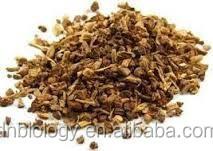 High quality Sarsaparilla Root Extract Powder Supply-Sarsaparilla Extract/Sarsaparilla Extract Powder/Sarsaparilla Extract 4:1