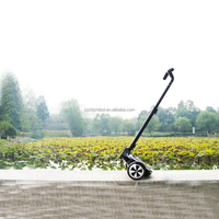 2016 New Fairy foldable handle mini 2-wheel Self-Balancing Electric Scooter