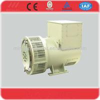 TWG brushless 220v 50hz generator