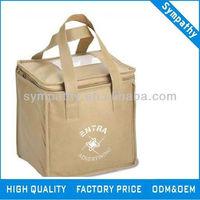 outdoor cooler bag for frozen food insulated cooler bag