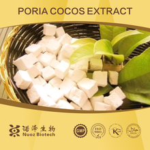Poria cocos extract/poriatin 2% with GMP kosher standard for buyer