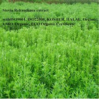 Wholesale stevia rebaudiana powder price