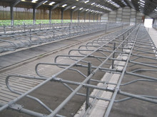 Poultry Fencing Cattle Free Steel Panels