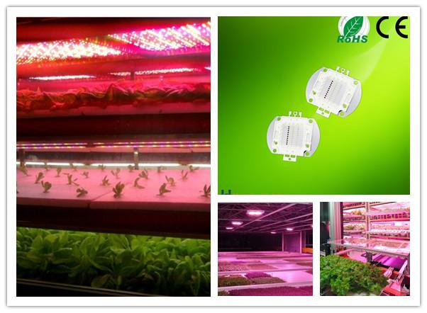 CE Approved Bridgelux Chips 15w LED RGB RGBW Full Spectrum Plant Grow Light (3).jpg