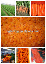 2014 new hot sale high quality chinese frozen carrot and mixed vegetable (canned peas and carrots)