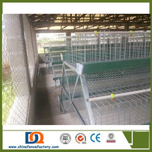 Durable Welded Wire Mesh chicken laying cages with poultry equipment