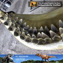 Il mio Dino- m30 simulazione animale <span class=keywords><strong>denti</strong></span> <span class=keywords><strong>di</strong></span> <span class=keywords><strong>squalo</strong></span> fossili