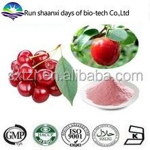 100% Water Soluble Choke Cherry Extract Powder