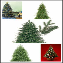 New Design Hot Sale Pre Lit Artificial Christmas Tree