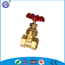 professional factory rising stem dn20 polished gate valve