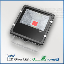 30w led cob grow light for plant growth