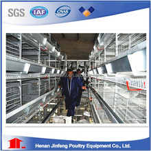 day old chicken layer cage for hotsale in poultry farms