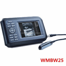 WMBW25 Veterinary ultrasound for cow, horse, sheep
