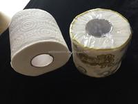 Embossing Standard Toilet Tissue Paper Roll for UK&Europe Market