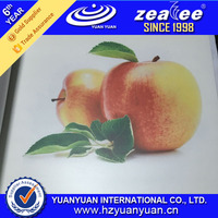 1.8-3.2m width Matte Eco-solvent/UV/Latex Large Format PP Synthetic Paper for inkjet print