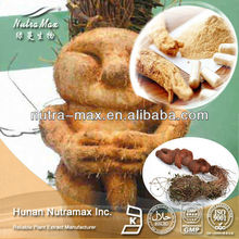 ISO Natural Fo Ti Root P.E. Polygonum Multiflorum Thunb Extract Powder
