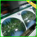 Etiqueta engomada del vinilo estático impresión personalizada
