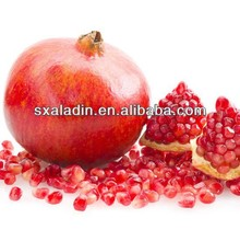 Natural Pomegranate Peel Extract Powder