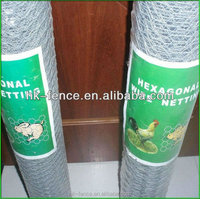 NEW Rabbit Wire Netting GREEN MESH FENCE FENCING 1 X 25M CHICKEN COOP AVIARY Chicken Wire Netting