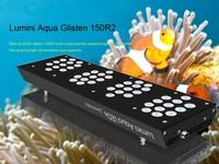 Lumini Aqua high output led aquarium lights for marine fish tank