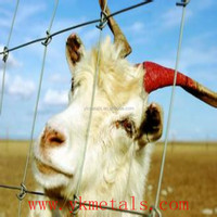 Low Dog/ Goat/ Hog/ Cattle/ Horse Wire Fence
