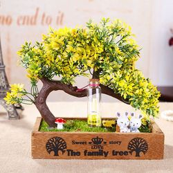 Specialized gift for high school graduate fairy garden corporate promotional gift items , gift available