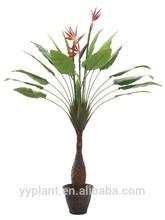 ft 6 tres tallos artificial de aves del paraíso de la flor
