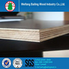 plywood supplier container flooring plywood