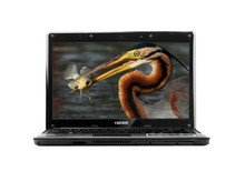 """cheapest 14"""" laptop with celeron or i3 CPU, 4G, 500G"""