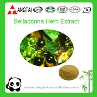 Anticholinergic ingredient Hyoscyamine from Atropa Belladonna Extract
