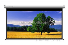 matte white manual projector screen/pull down projector screen/price for manual screen