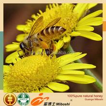 17year professional custom in bulk alpine honey