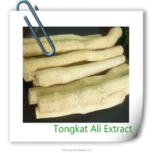 diabetes herbal Tongkat Ali Extract