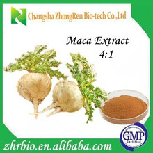 High Quality 100% Water Soluble Extract Ratio: 4:1 maca root extract