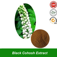 Pure Natural Black Cohosh Extract Powder For Sports Ingredient Black cohosh extract/P.E powder