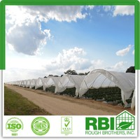 Tunnel Greenhouse film cover low cost agricultural farm Steel Frame comercial green house single span