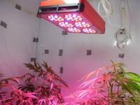 2015 High Quality 450W 6000Lumens led grow light