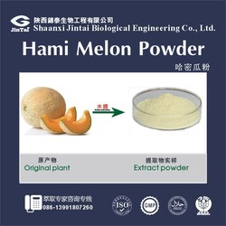 high quality yellow cantaloupe extract powder form
