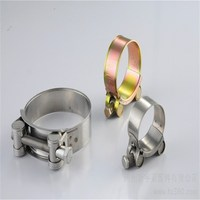 Mnaufacturer Sale SUS304 Stainless Steel Heavy Duty Robust Clamp with Solid Trunion for Flat Face Coupling 44-47mm
