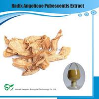 High Quality Radix Angelicae Pubescentis Extract