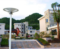 Round Design Wide Lighting Angle Cheap Solar Street Light All In One Led