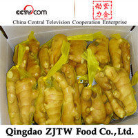 chinese ginger root price , clean washed fresh ginger , ginger