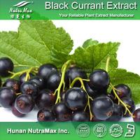 Supplier By NutraMax Black Currant Powder Extract,Blackcurrant Powder Extract,Plant Extract