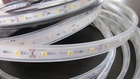surface glue, silicon tube, expoy injection waterproof 4.8W/M 9.6W/M SMD 3528 Warm White Flexible led strip light